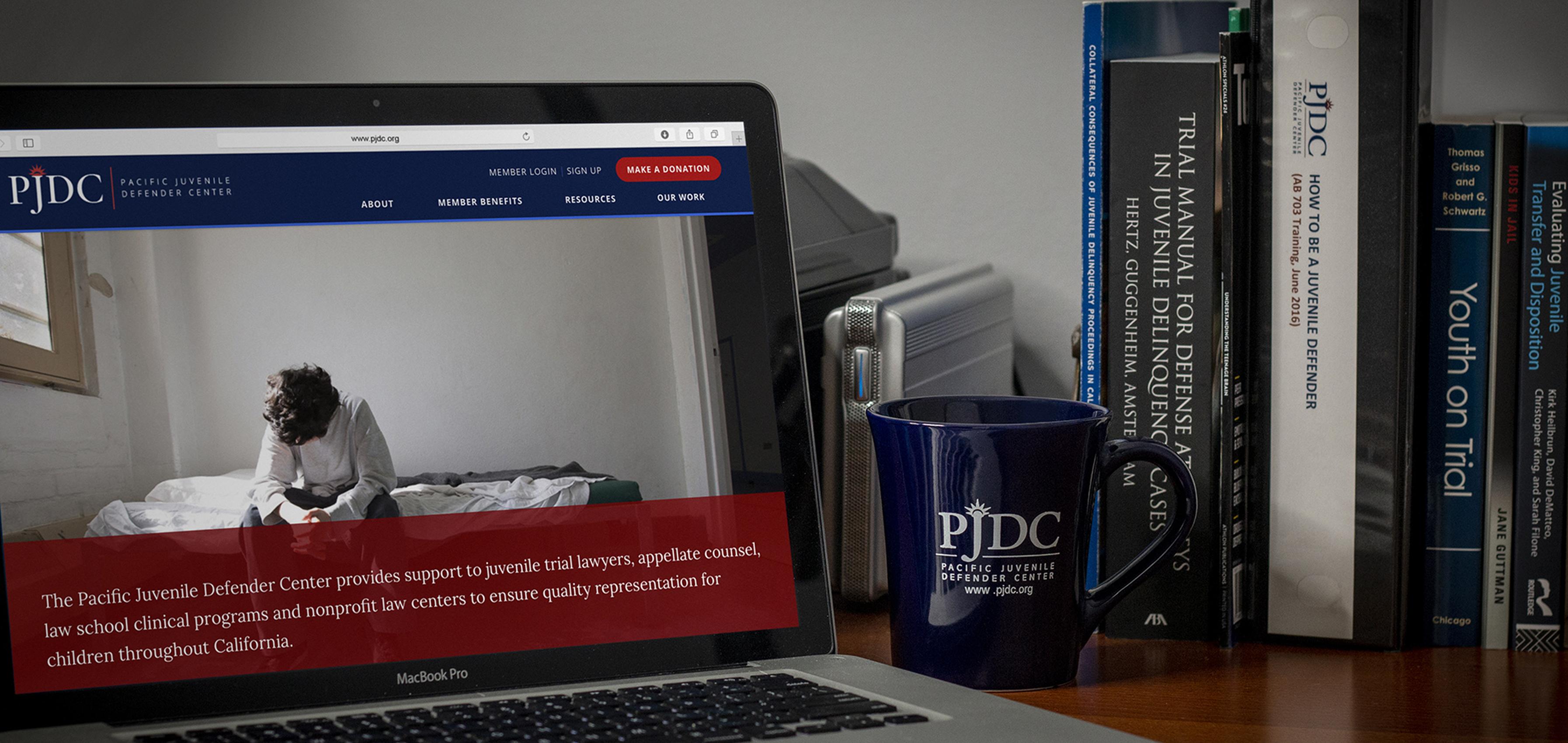 PJDC Training Videos